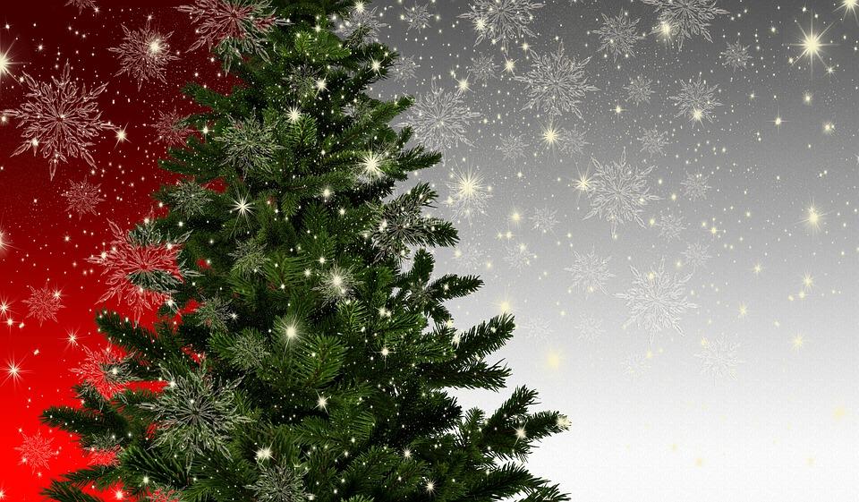 La magie de Noël: Une magie pas comme les autres